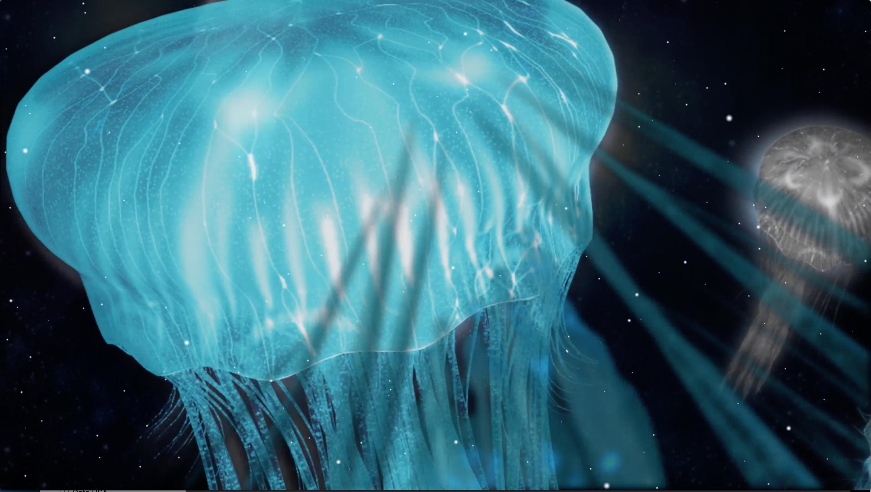jullyfish